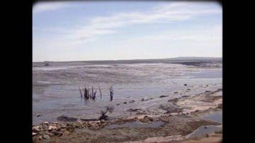 La rotura de la presa en la mina Boliden: el desastre ecológico que estuvo a punto de acabar con el Parque de Doñana en 1998