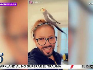 El vídeo viral de Thalía anunciado su regreso al gimnasio