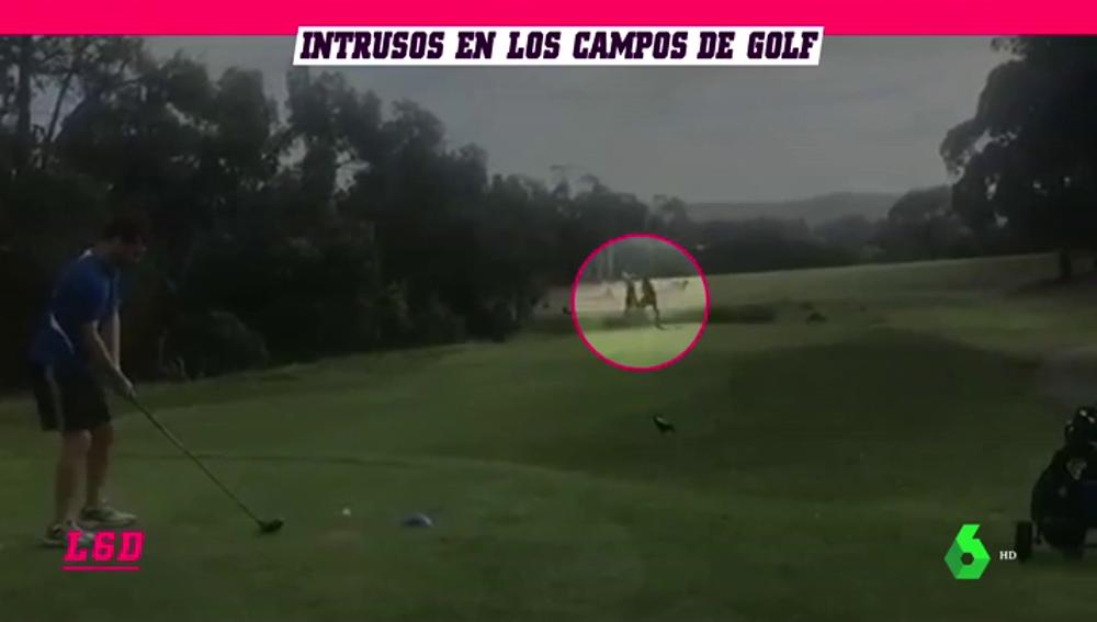 Golf_L6D