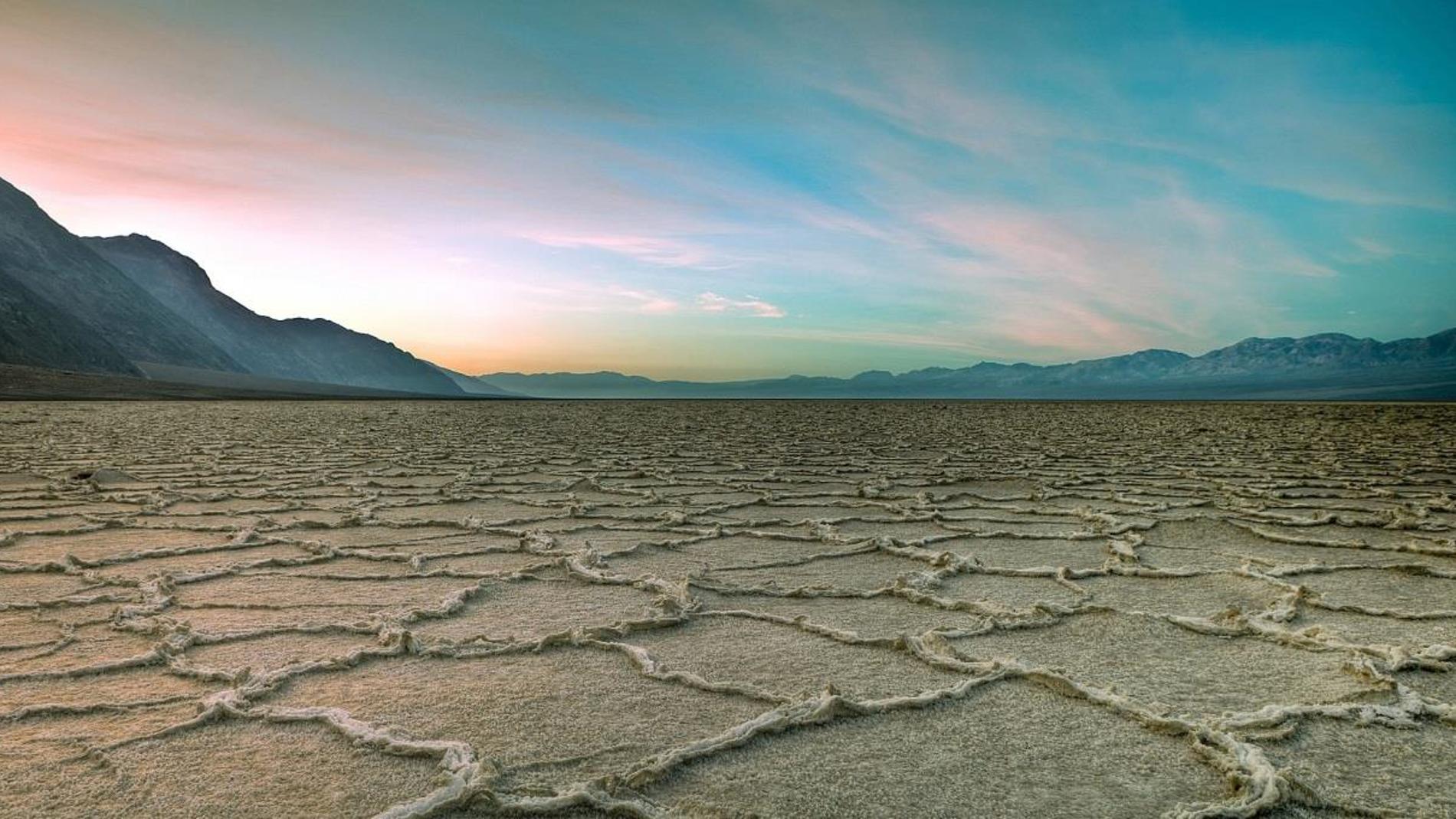 A mas aridez menos disponibilidad de micronutrientes esenciales para la vida