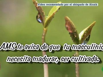 Imagen de uno de los vídeos difundidos por el Obispado de Alcalá de Henares