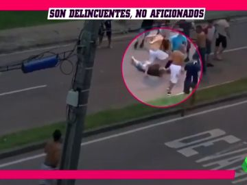 pelea_brasil