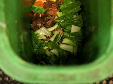 Residuos orgánicos domésticos.