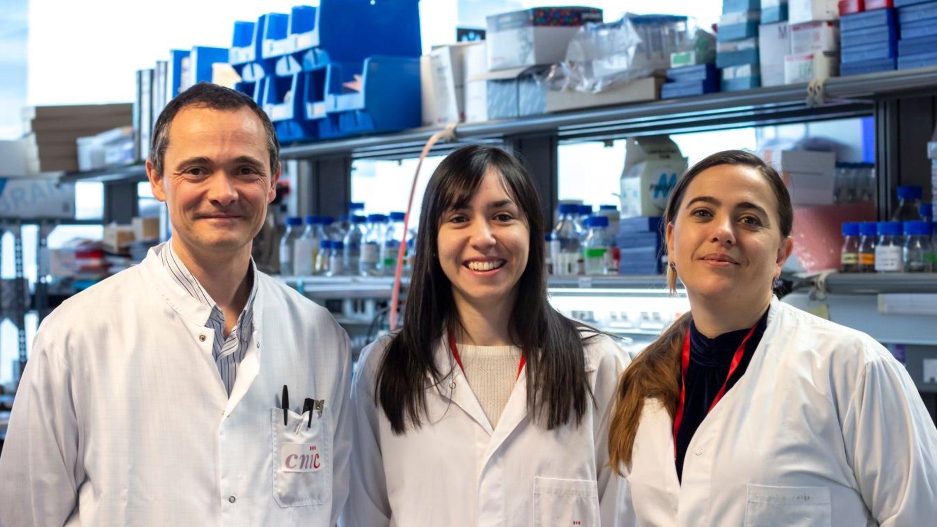 Alfonso Mora, Leticia Herrera-Melle y Guadalupe Sabio