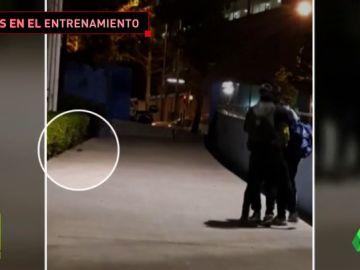 """Invasión de ratas en un campo infantil de fútbol en Barcelona: """"Es surrealista"""""""
