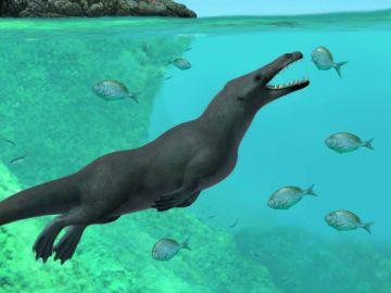 Ilustración de la ballena de cuatro patas