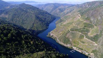 La Ribeira Sacra optará a la declaración de Patrimonio Mundial de la Unesco Viñedos en la Ribeira Sacra siguiendo el curso del Sil. EFE/Archivo La Ribeira Sacra optará a la declaración de Patrimonio Mundial de la Unesco