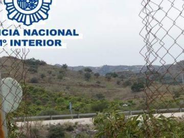 Imagen de explotaciones agrícolas de la Axarquía, Málaga