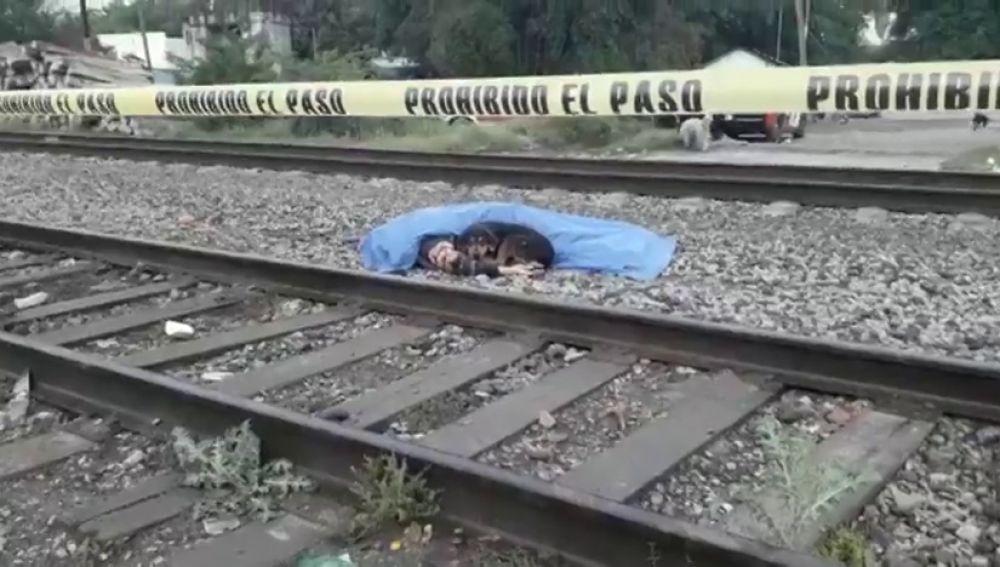 Un perro custodia el cuerpo de su dueño, atropellado por un tren en México