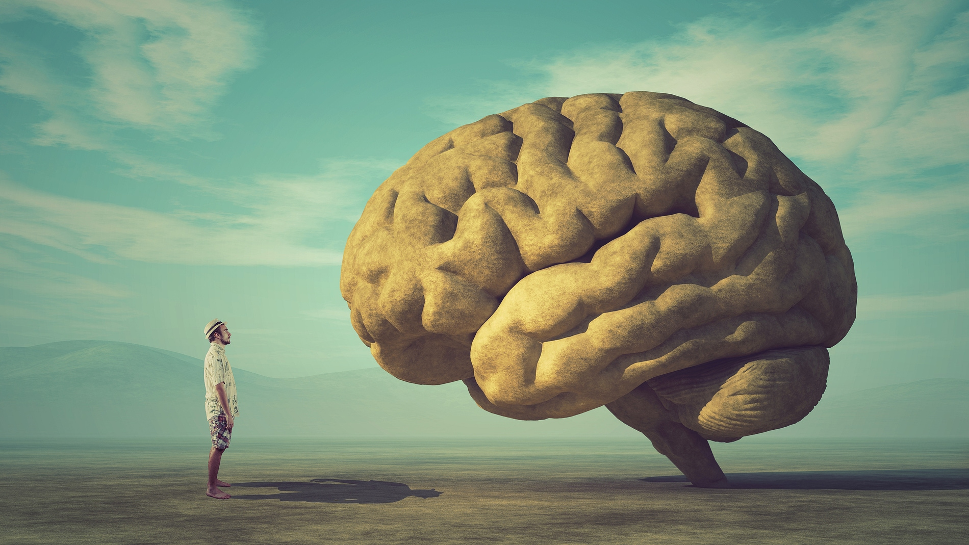La irreversibilidad de la muerte cerebral cuestionada