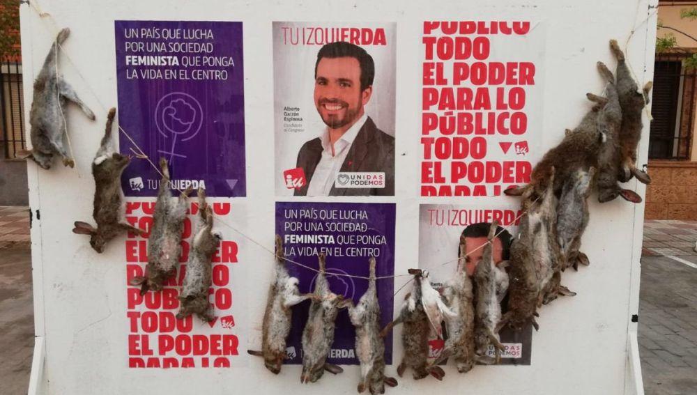 Conejos muertos sobre los carteles electorales de IU