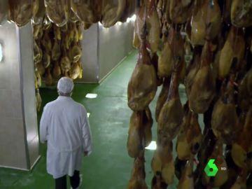 El jamón ibérico, en jaque: un hongo asiático amenaza de muerte las encinas que dan de comer a 700.000 cerdos ibéricos