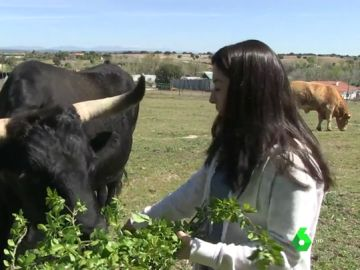 Santiago Abascal en los toros, Aitor Esteban viendo el fútbol o Laura Duarte con un buey: así pasan la jornada de reflexión los otros partidos