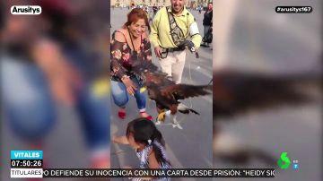 Una niña asustada intenta escapar de las garras de un águila ante las risas de su madre