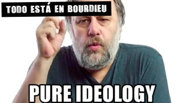 Pure ideology