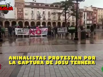 Protesta animalista