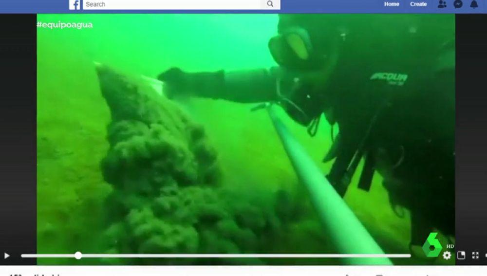 Así es el alarmante estado en el que se encuentra el Mar Menor: aguas contaminadas se vierten de forma descontrolada