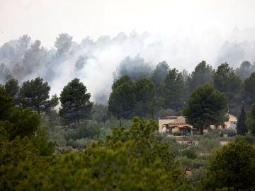El incendio declarado en el municipio tarraconense de El Perelló
