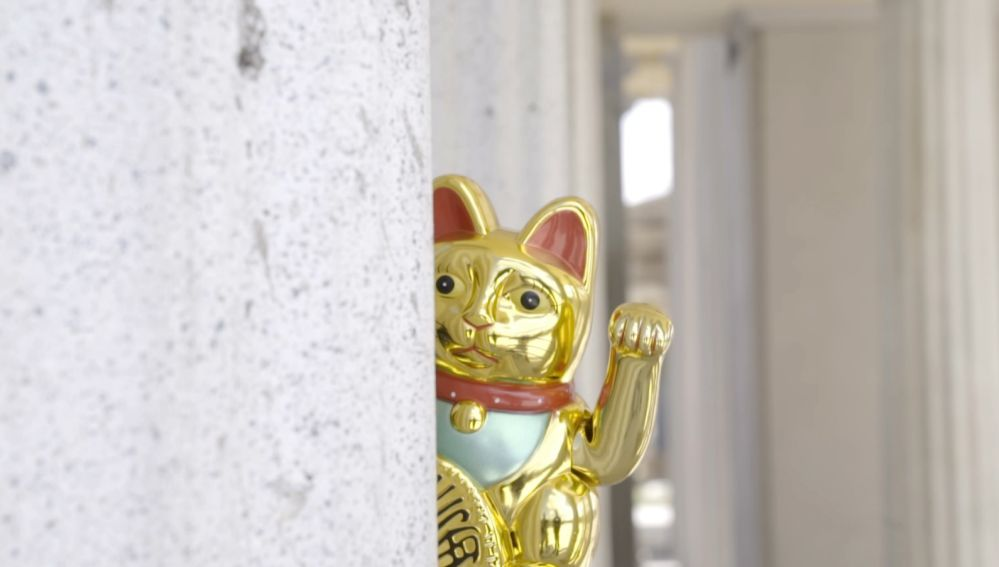 Imagen de un gato chino