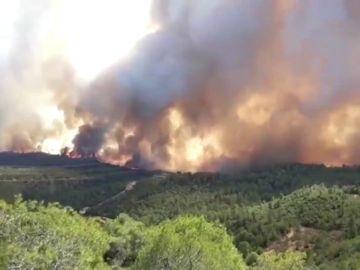 El incendio forestal de Tarragona arrasa al menos 2.500 hectáreas y provoca el desalojo de 100 personas