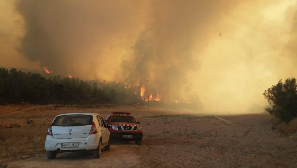 Imagen del incendio forestal en La Torre de L'Espanya