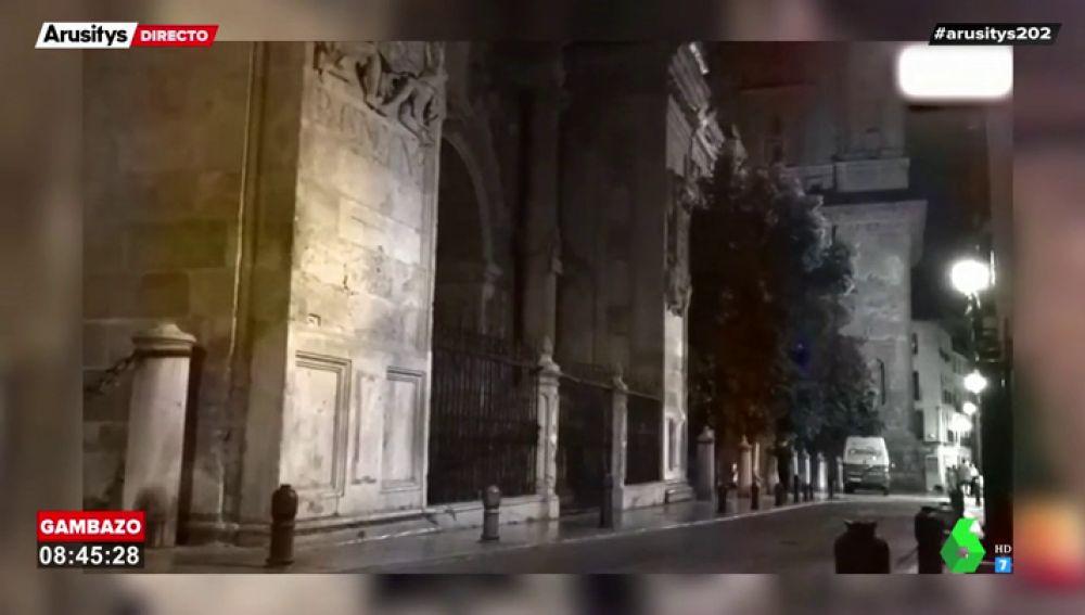 Imagen de la Catedral de Granada durante la noche