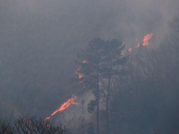 Imagen del incendio en Gavilanes, Ávila