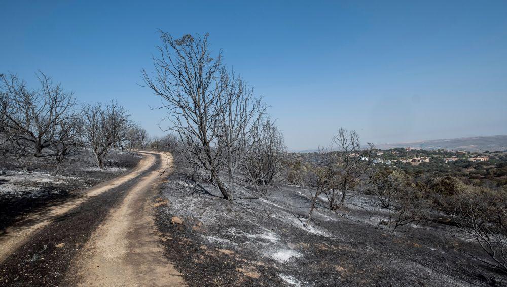 El incendio a las afueras de Toledo quema 1600 hectáreas y está perimetrado