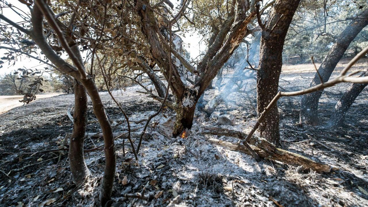 Vista de la zona afectada por el incendio de Toledo