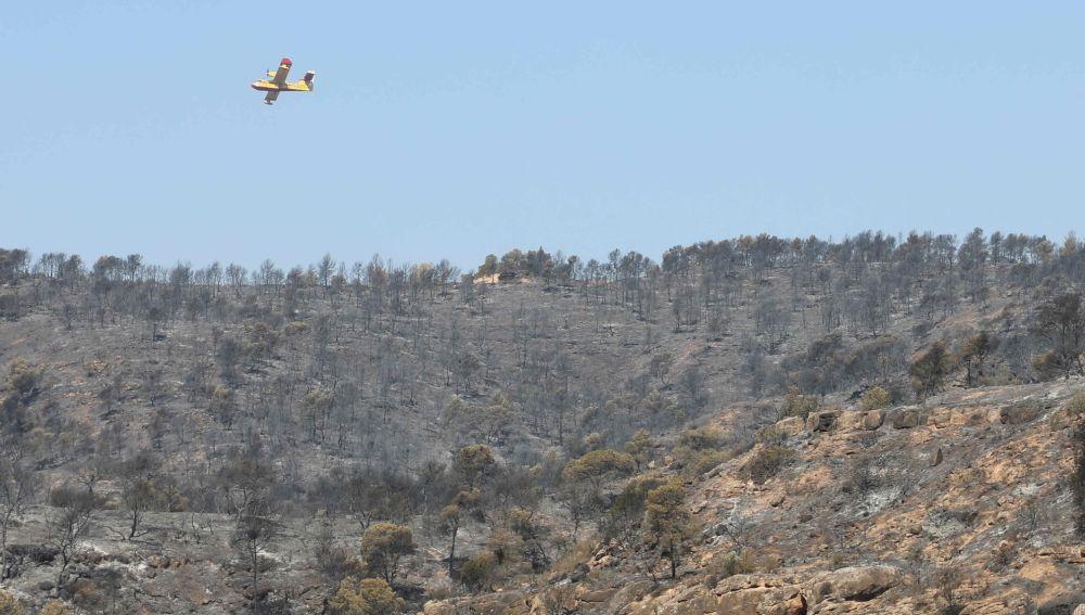 Terreno tras el incendio en la Ribera d'Ebre