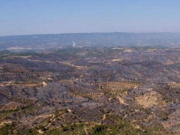 Incendio de la Ribera d'Ebre