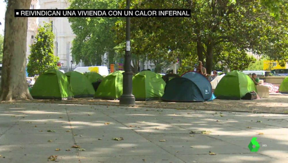Sin agua, a 40 grados y rodeados de suciedad e insectos: así luchan estos acampados por una vivienda digna frente al Ministerio de Sanidad