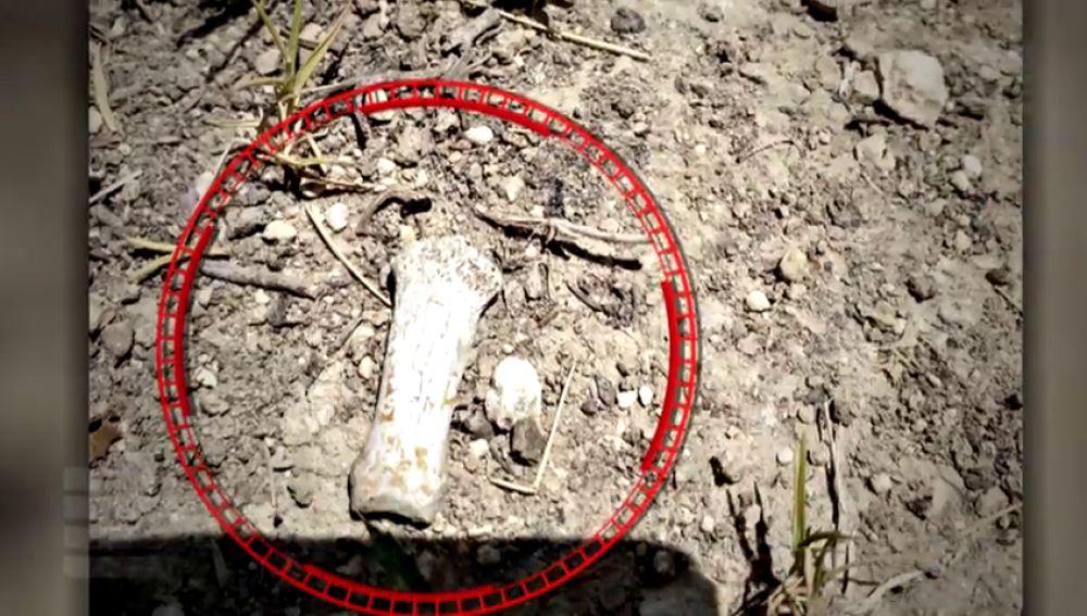 Habla el joven que encontró restos óseos en la fosa del crimen de Alcàsser