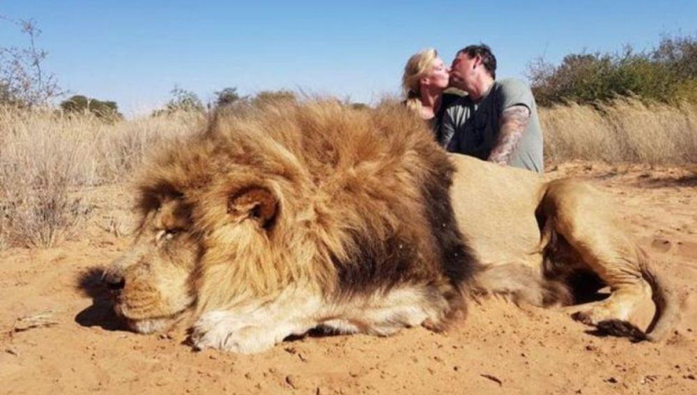 Indigna beso de una pareja de cazadores tras matar a un león
