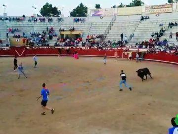 Un toro embiste a un joven en las fiestas de San Victorino en Arévalo