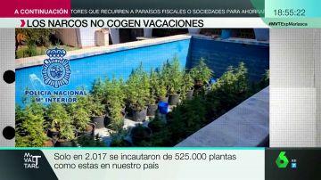 'Guarderías' marítimas y plantas de marihuana escondidas en una piscina: así actúan los narcos