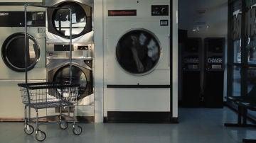 Un gato en una lavadora
