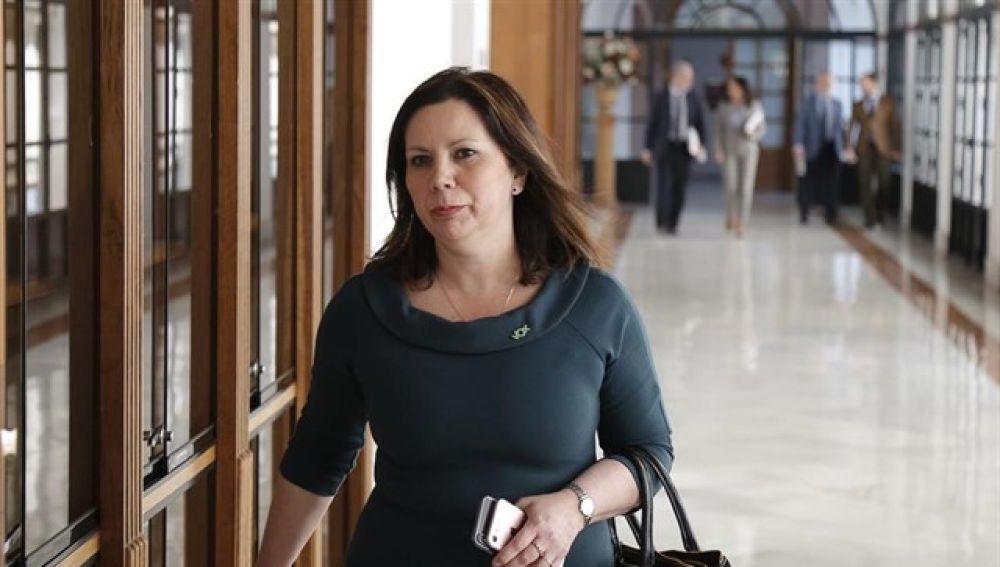 La portavoz adjunta del grupo parlamentario Vox, Ángela Mulas
