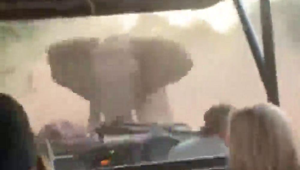 Un elefante embiste el coche de un grupo de turistas en un safari