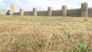 Ávila decreta la emergencia por sequía con embalses sólo al 44% de su capacidad