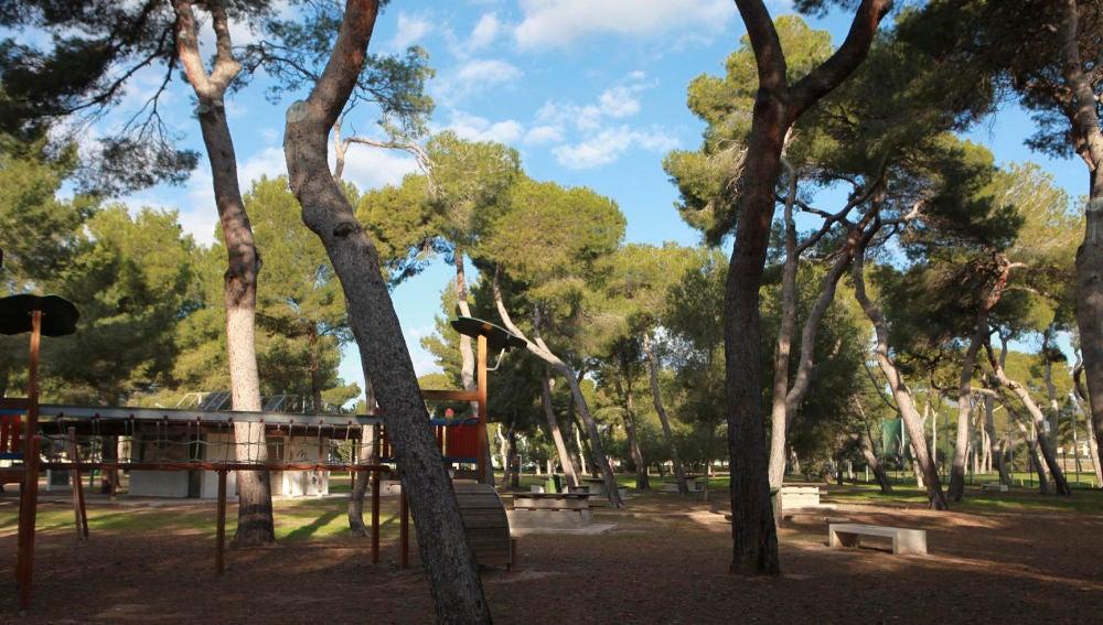Parque del Pinar