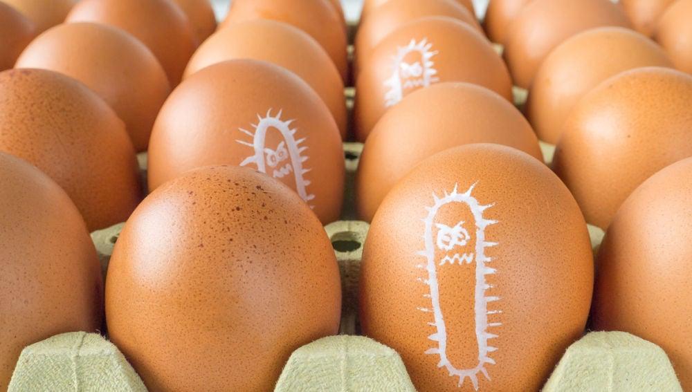 Cuidado con el consumo de huevo crudo