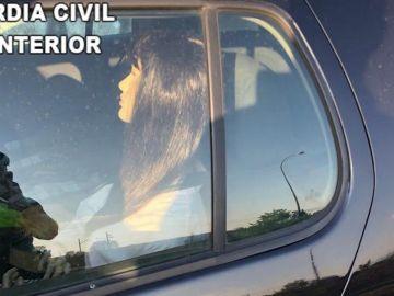 Maniquí con peluca detectado por la Guardia Civil