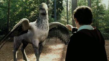 Hipogrifo en la película 'Harry Potter y el Prisionero de Azkaban'