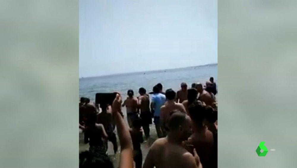 Un pez espada irrumpe en la playa de la Albufereta en Alicante