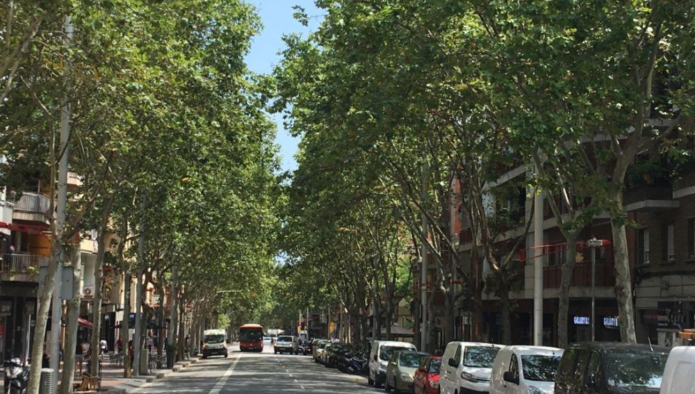 Nou Barris, el distrito de Barcelona donde sucedieron los hechos.