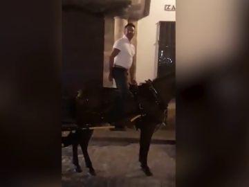 Indignación por el trato de un cochero a su caballo exhausto y ensangrentado en Sevilla