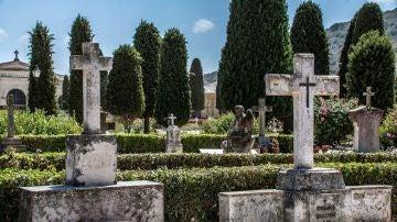 Imagen del cementerio de Manacor