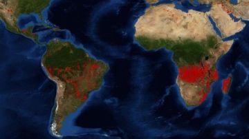 Imagen de la NASA que muestra los focos de incendio activos mundiales