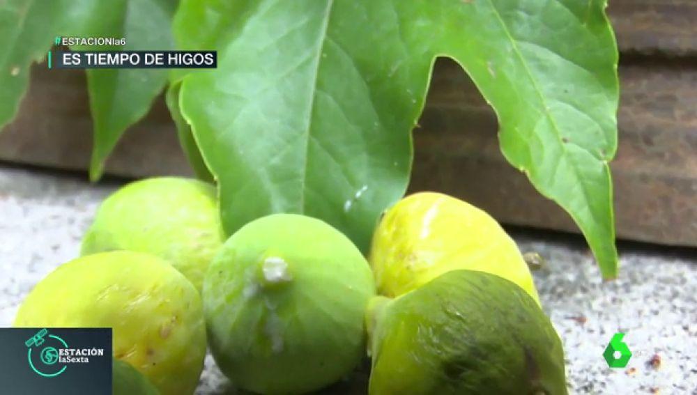 Mermelada de higos: la receta ecológica y fácil para este septiembre